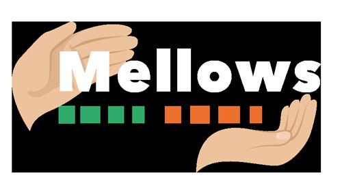 Mellows Care Home Loughton